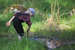 Sigvald styrer med vann