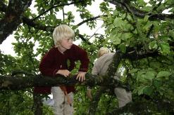 Eple- og plommetreene på festningen måtte utforskes