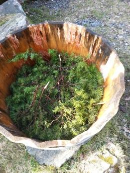 Vi fylte kvister med brake i bunnen på stampen
