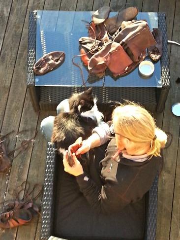 Pusen er bestevenn med Espen og skal alltid være med om det er aldri så upraktisk / The cat is best friends with Espen and should always be included if it is ever so inconvenient