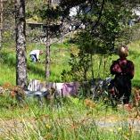 Klesvask og torvtaking i bakgrunnen / Laundry in front, peat bog in the background