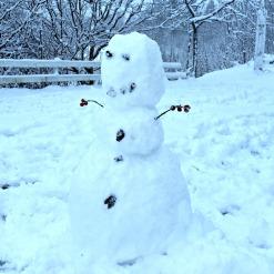 Mens jentene lekte inne, var guttene ute og benyttet årets julesnø / The boys were outside playing in the christmas snow while the girls played inside
