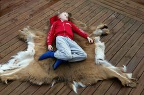 Sigvald tester fellen / Sigvald testing the fur