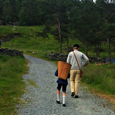 På vei til støls / On the way to the summer farm