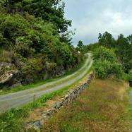 Det ble noen turer opp og ned den gamle sjøveien i løpet av denne ferieuken / The road to the sea
