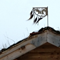 Vindfløyen på gjesteloftet / The wind vane on the roof of the guest loft