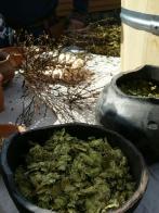 Ølbrygging med pors og humle, og en nyanskaffet gjærkrans til å fange gjæren etterpå / Brewing with both bog-myrtle and hops