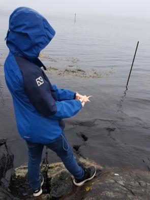 Sigvald ofrer lærtrekanter i havet / Sigvald sacrificing leather triangles in the sea