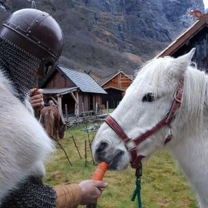 Litt gulrot er godt før jobben startet, mange små fikk seg ridetur i løpet av markedet / A carrot befor work
