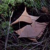 I jorden eller myren? / Into the earth or bog maybe?